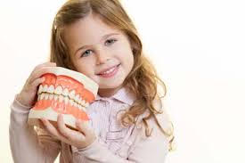 Primary & Permanent Teeth | Pan Dental Care in Melrose, MA